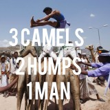 India: Camel jumping competition!